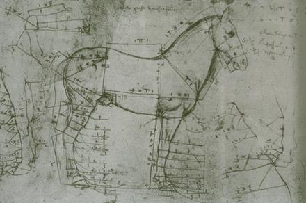 Crazy Horse  Wikipedia